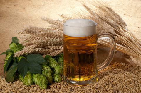 agua-cebada-lupulo-cerveza