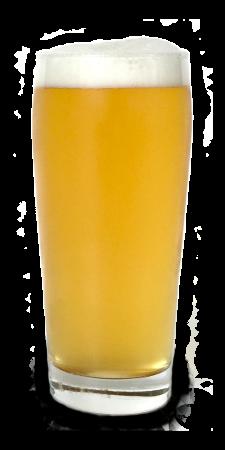 trigo bier
