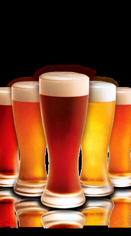 variedad cerveza birrasdeluxe